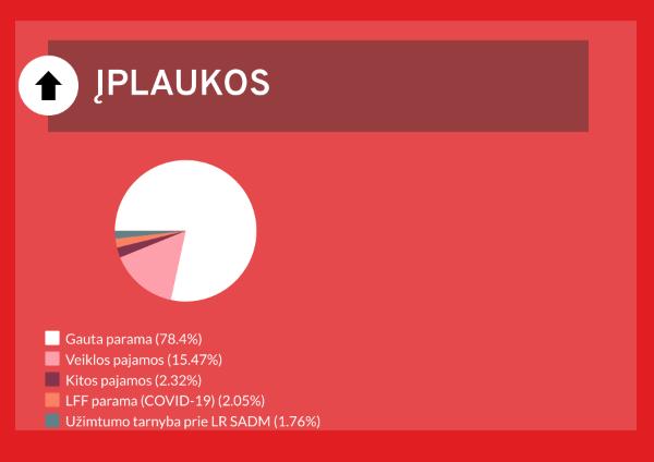 FK Vilnius įplaukos